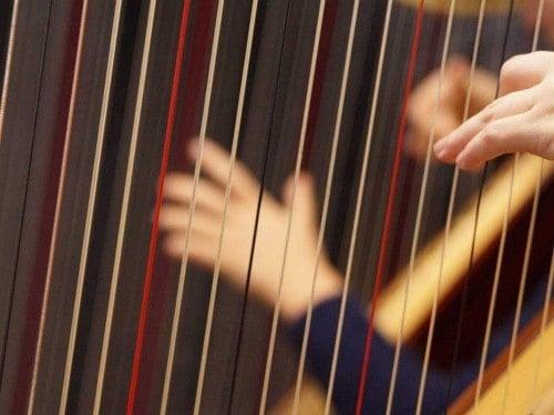 Traditional • Folk • World Instruments