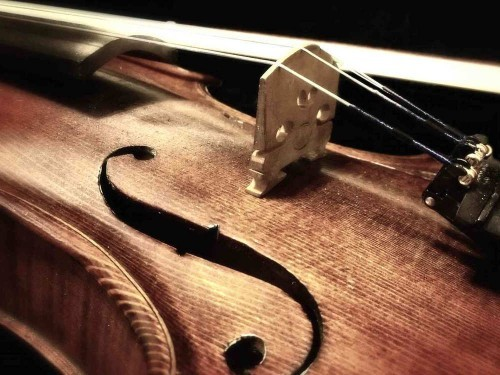 String Instruments Tuition