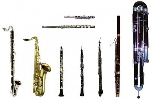 Woodwind Family