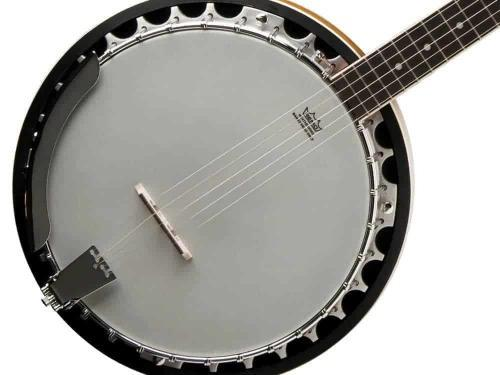 Introducing 5-String Banjo
