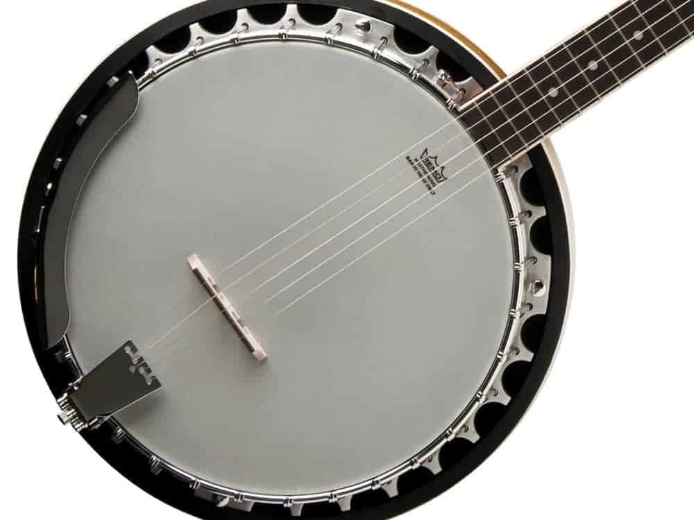 Introducing 5-String Banjo • Waltons New School of Music