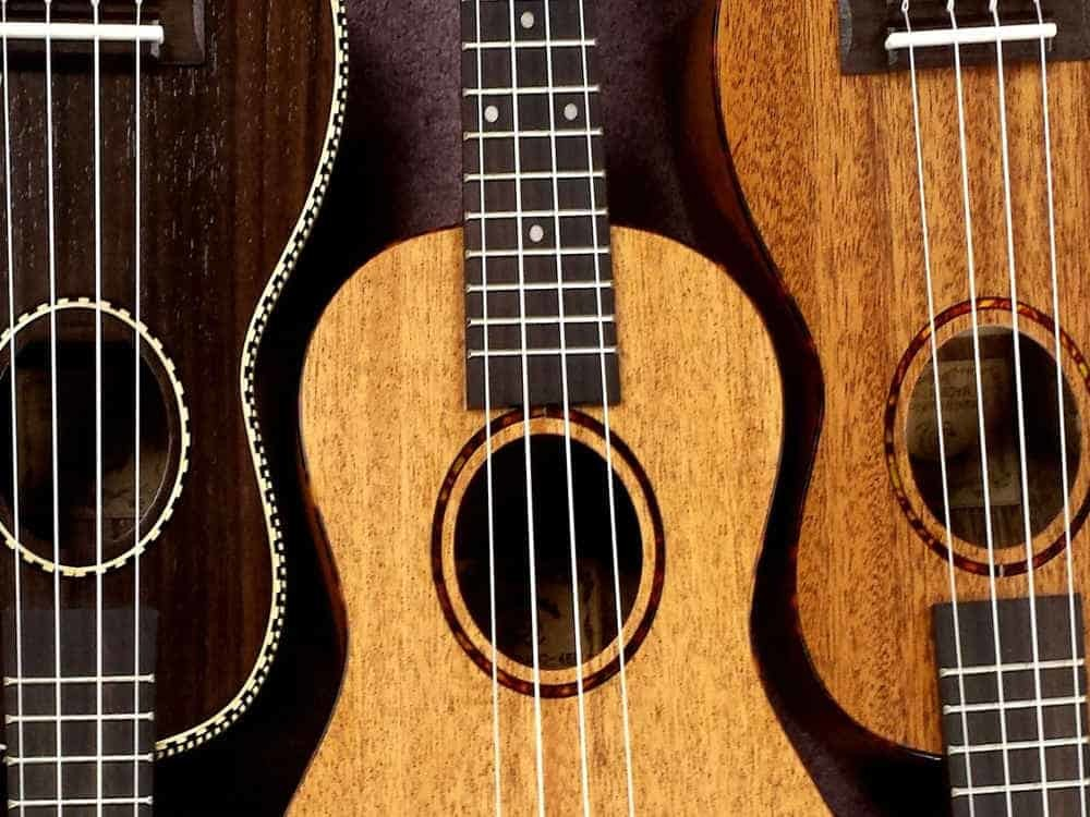 Introducing Ukulele